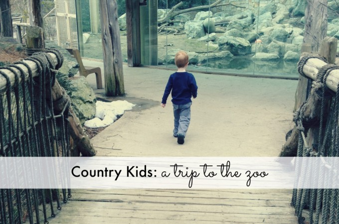 Country Kids: a trip to the zoo