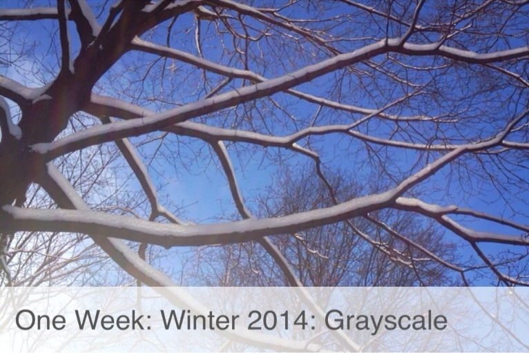 One Week: Winter 2014: Grey Scale