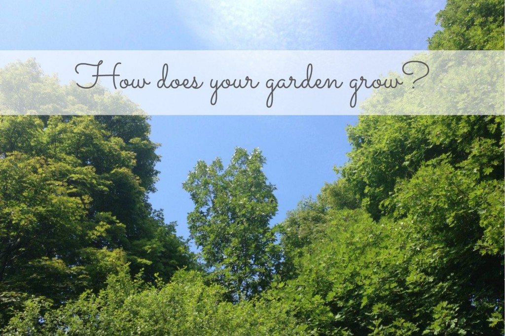 How does your garden grow 140806