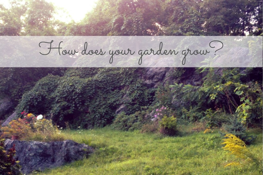 How does your garden grow 140821
