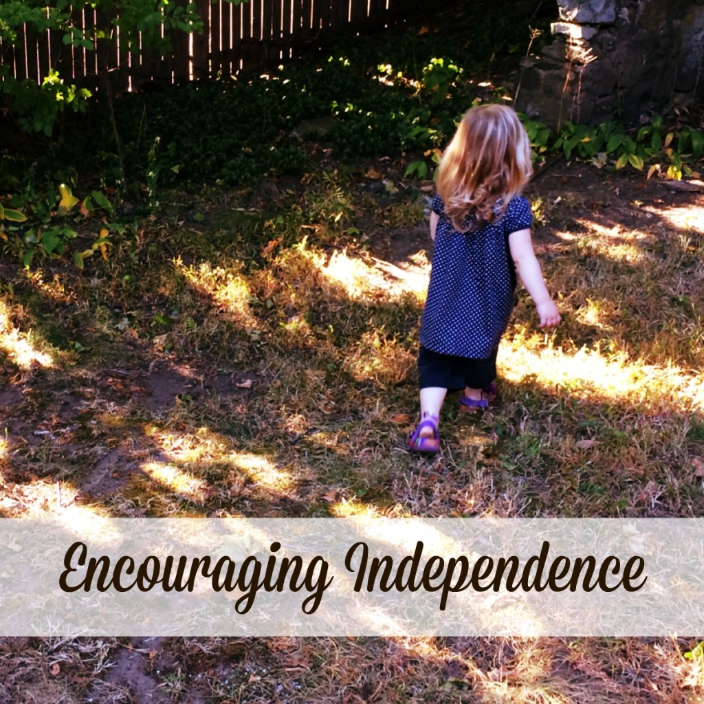 Encouraging Independence