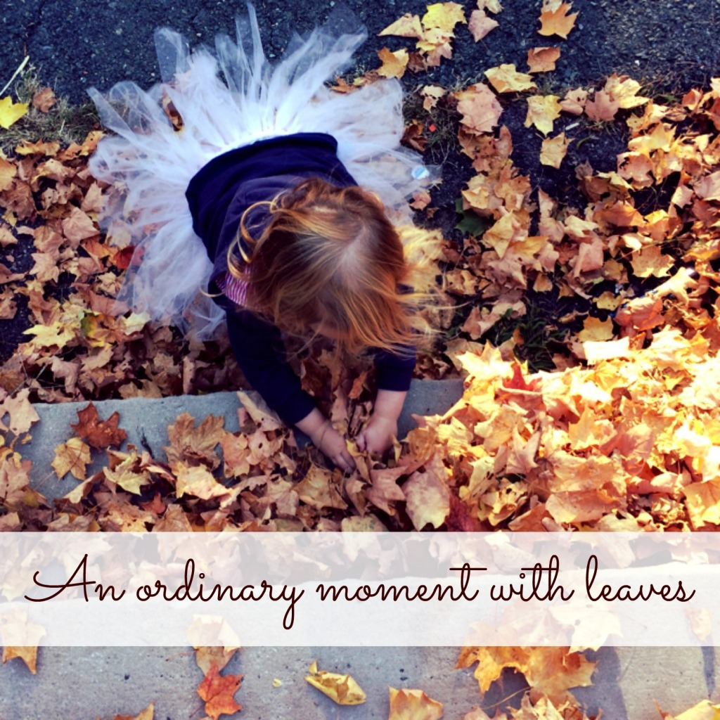 Country Kids: an ordinary moment with leaves