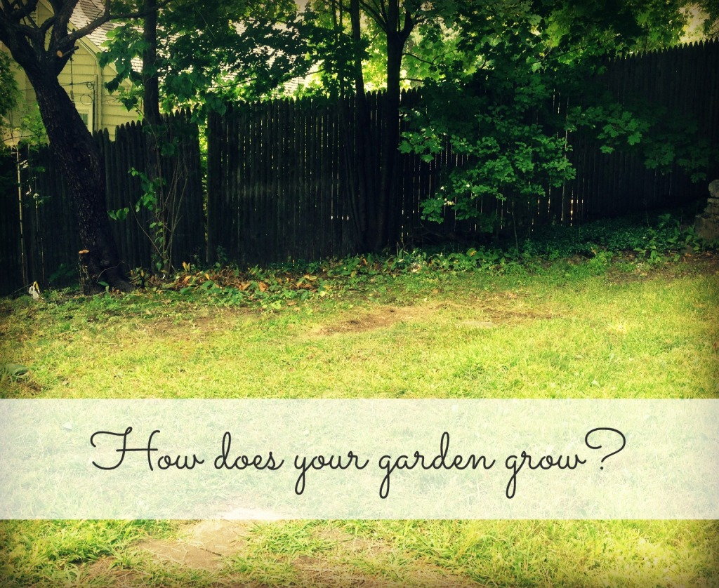 How does your garden grow 141015