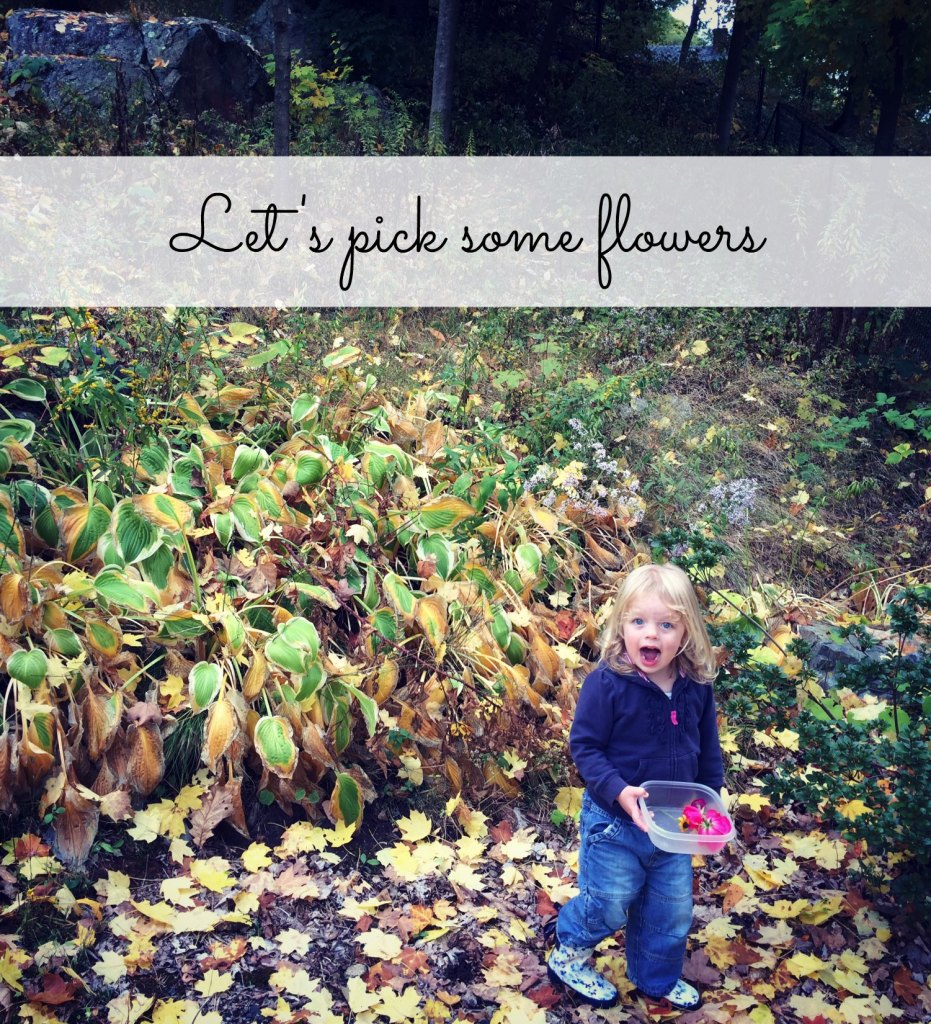 Country Kids: let's pick some flowers