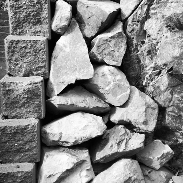 The landscapers have used rocks reclaimed from the excavations to create a transition from old wall to new. Love it! #bwphotoproject