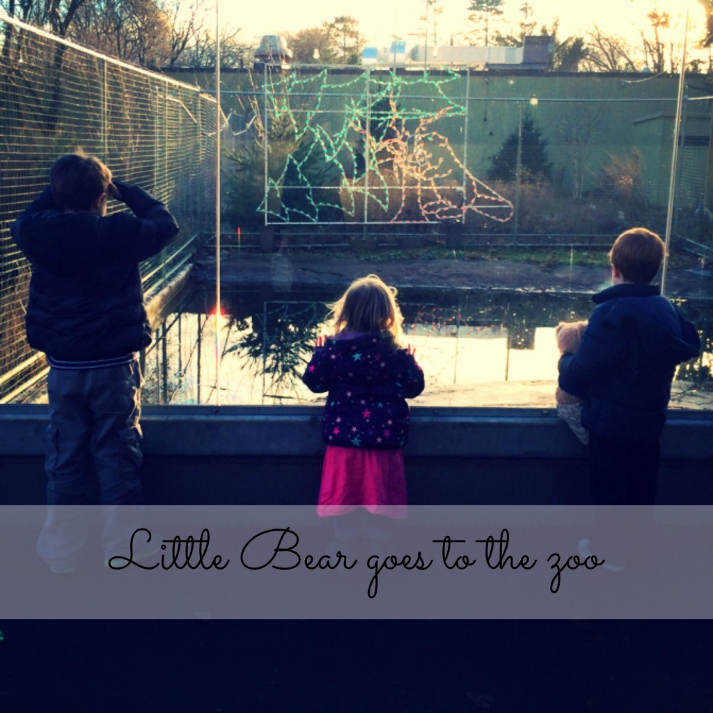 Country Kids: Little Bear goes to the zoo