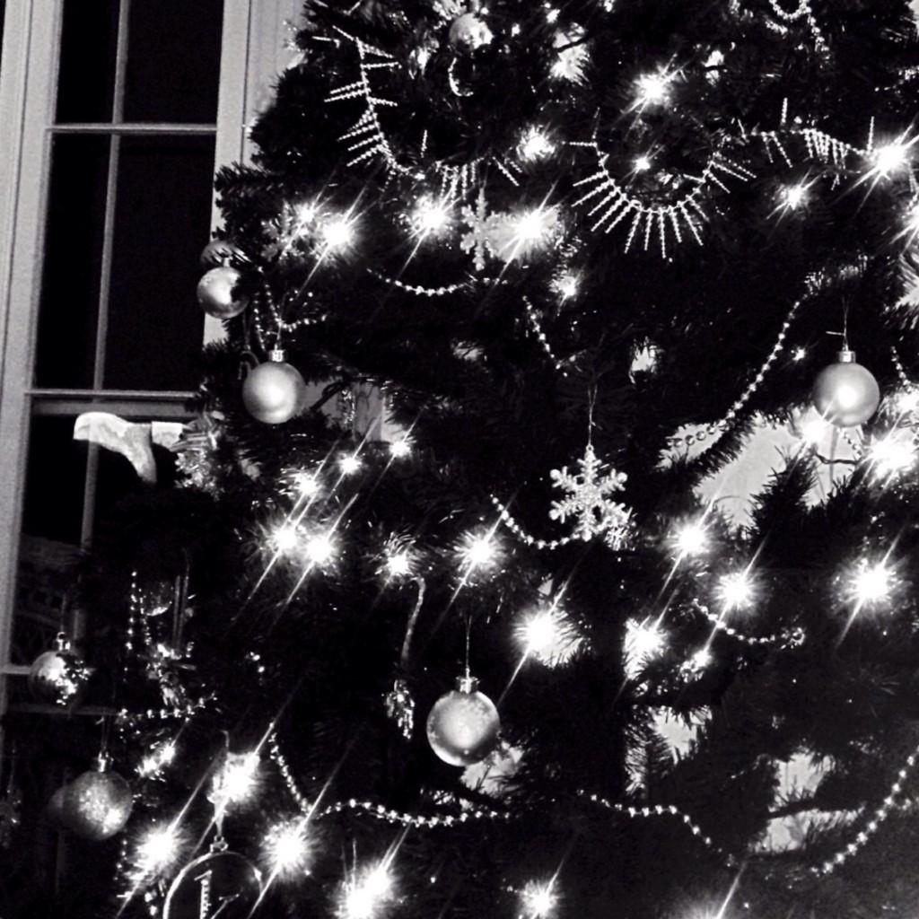 150104 Christmas Tree