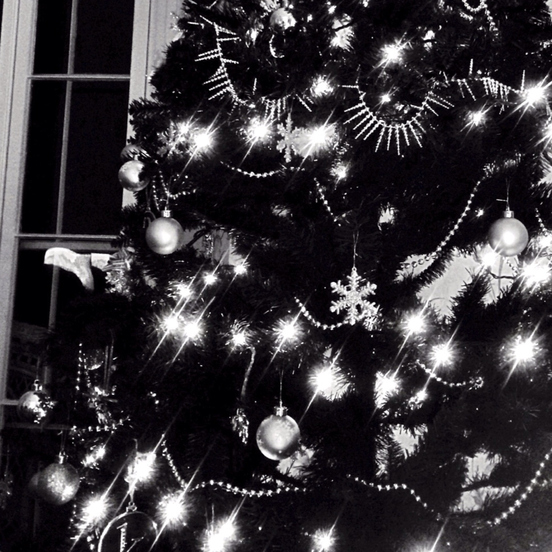 BW Photography Project Christmas Tree