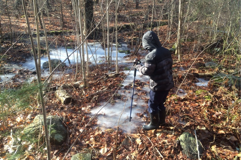 Investigating Ice 1