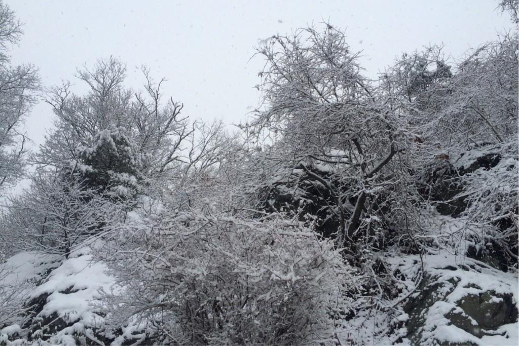 More Snow 3