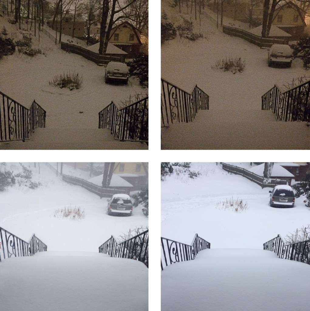 Progress of Blizzard