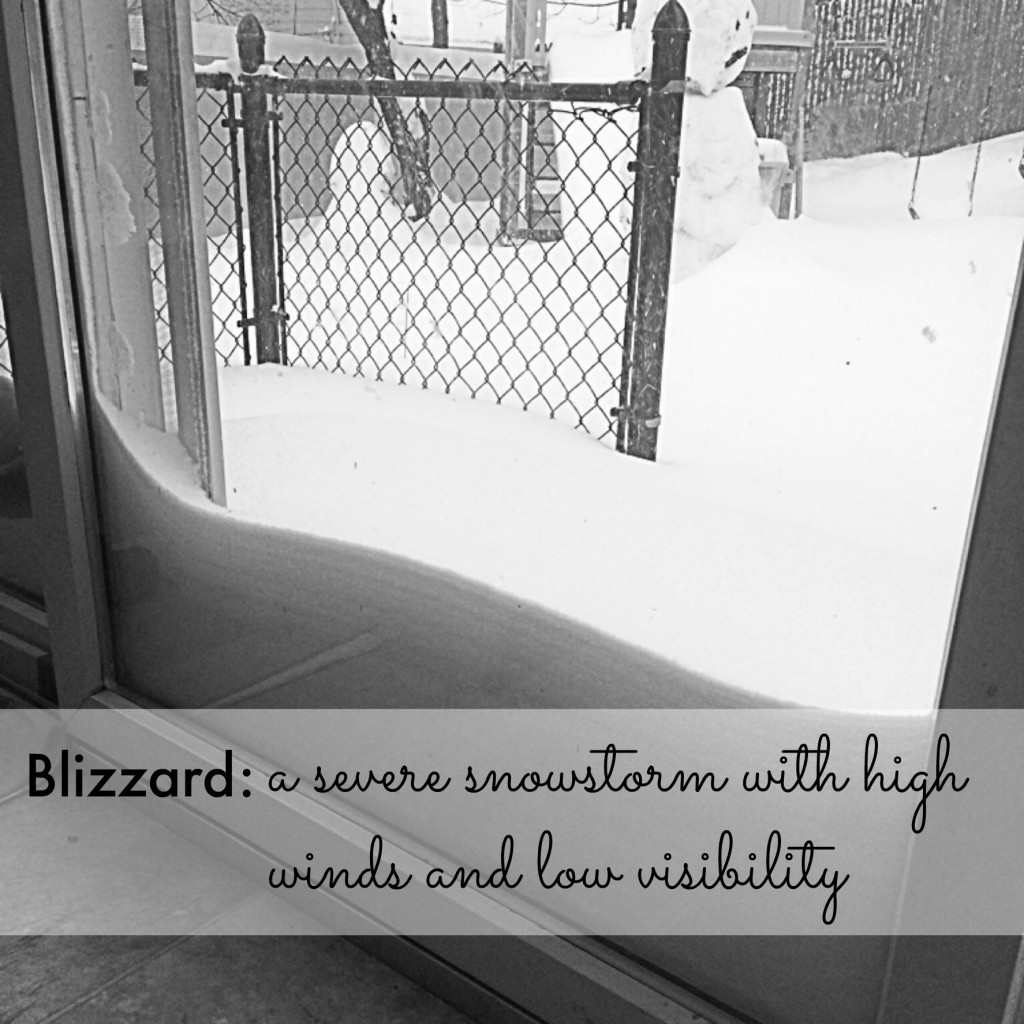 The Truth About Blizzards
