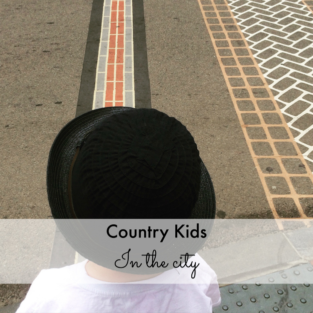 Country Kids: in the city