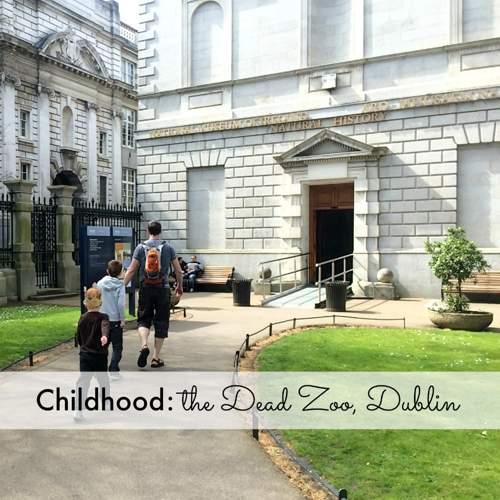 Childhood: the Dead Zoo Dublin