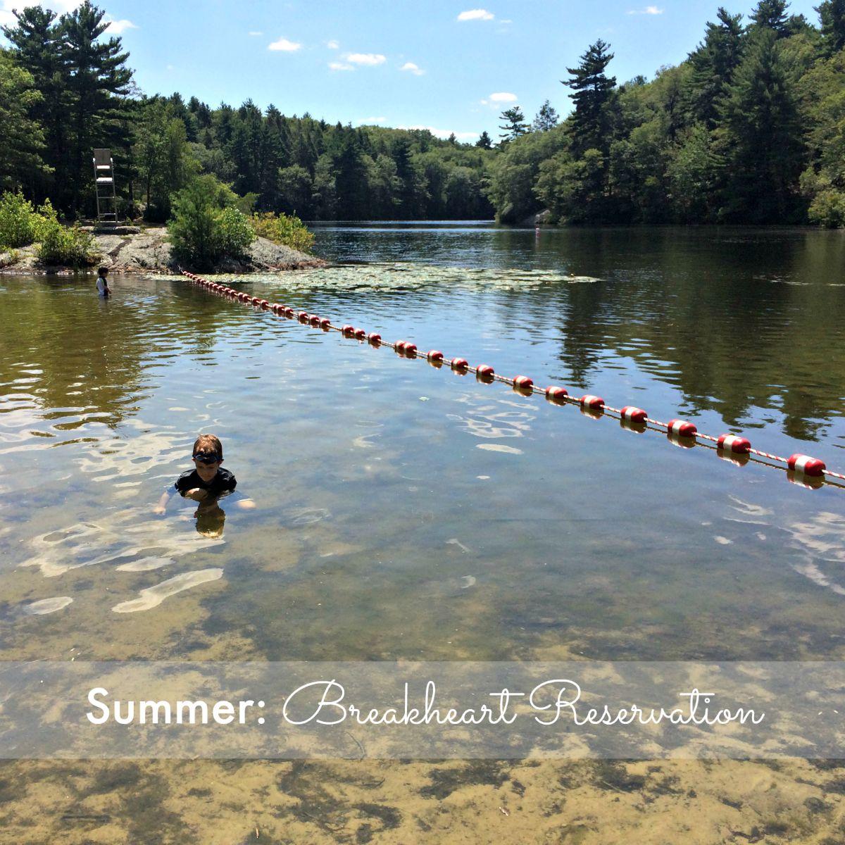 Summer: Breakheart Reservation