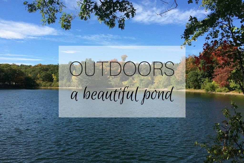 OUTDOORS A Beautiful Pond