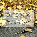 Outdoors: the joy of leaves