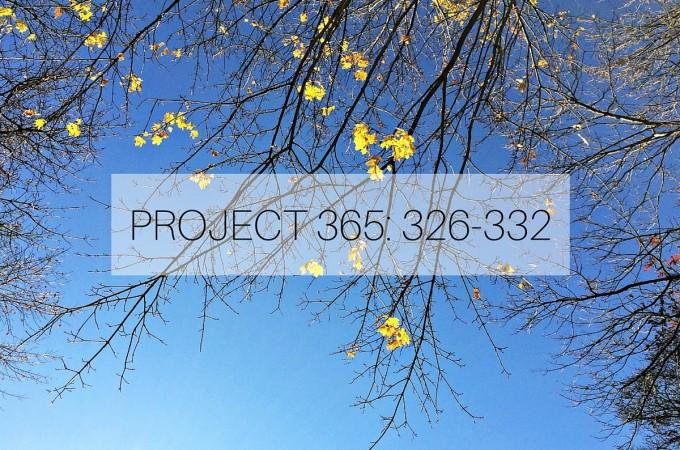 Project 365: Week 48: 326-332