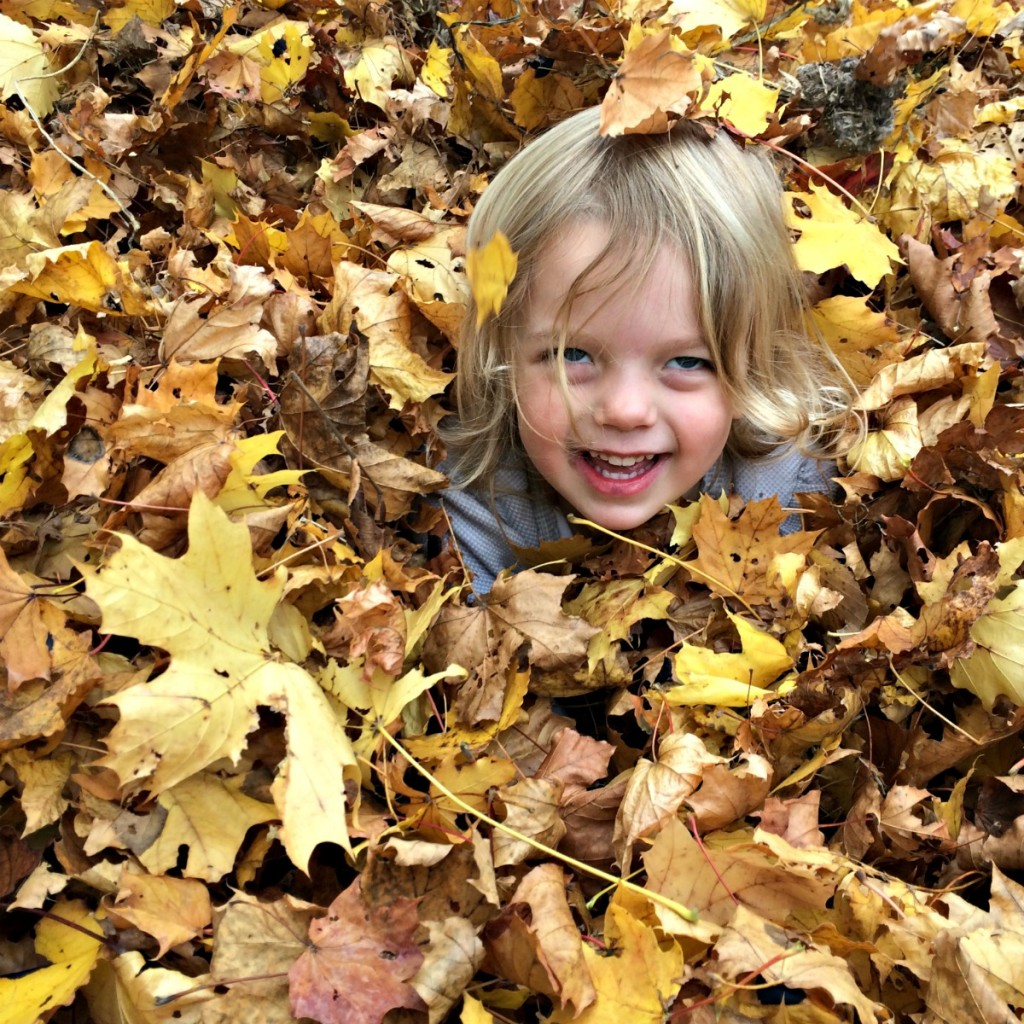 The Joy of Leaves 10
