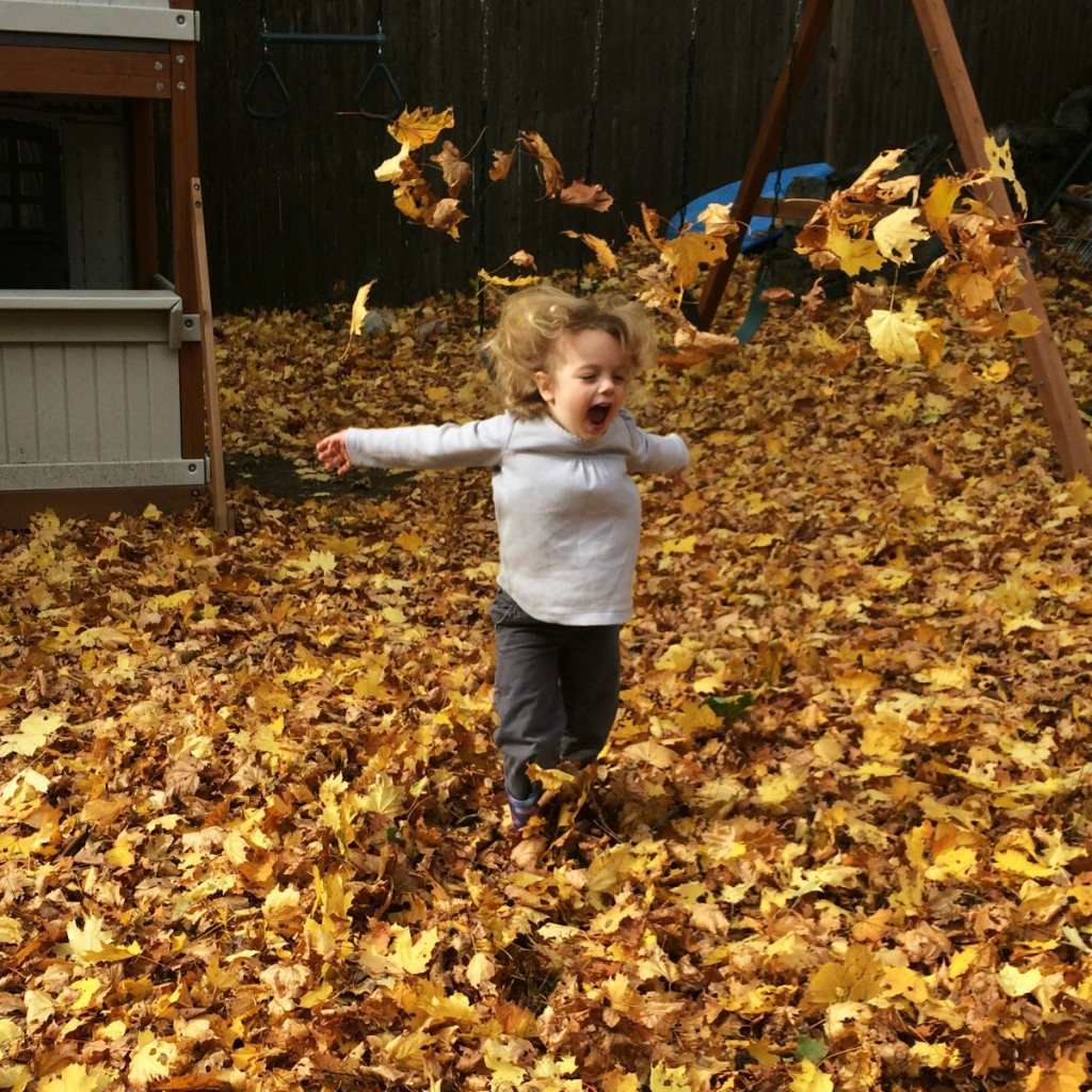 The Joy of Leaves 2