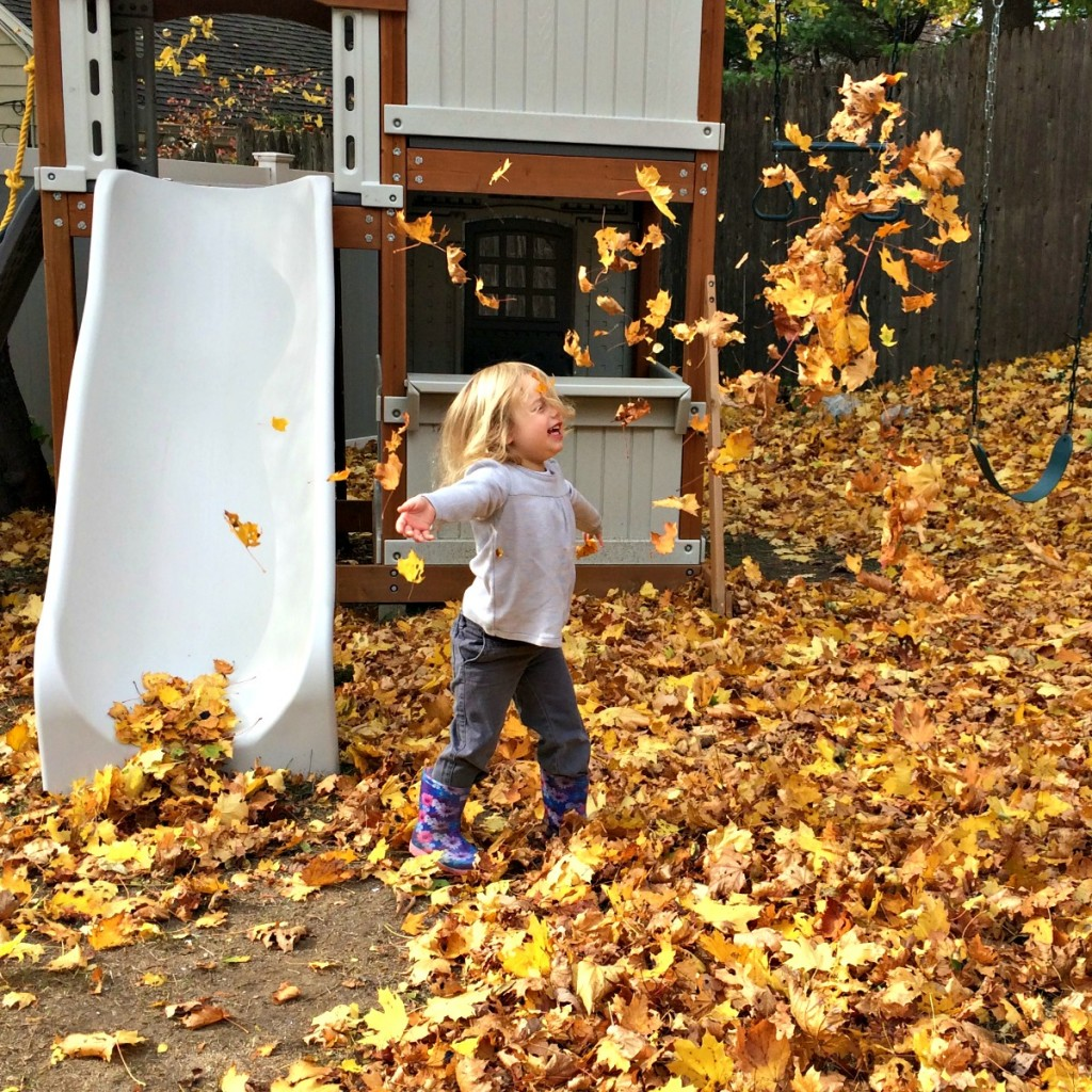 The Joy of Leaves 3