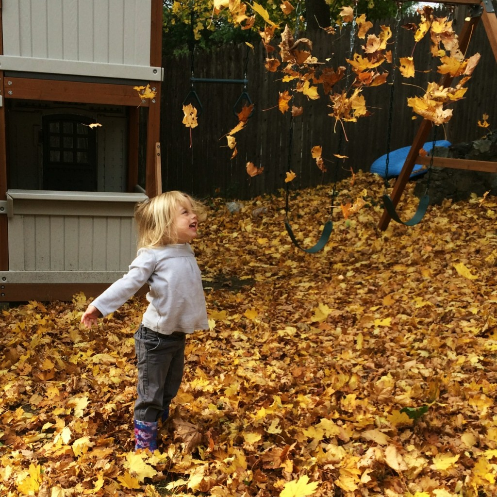 The Joy of Leaves 4