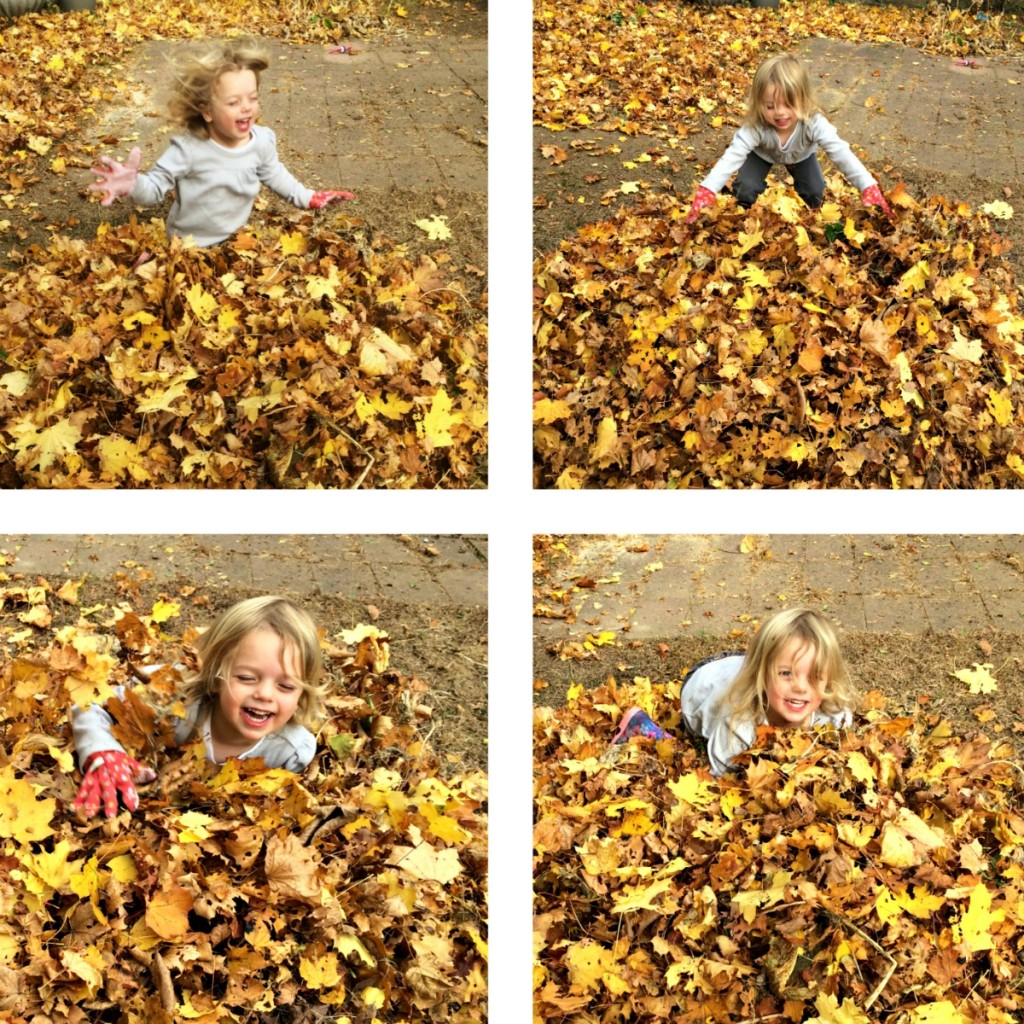 The Joy of Leaves 6