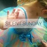 SILENT SUNDAY 151220 Featured