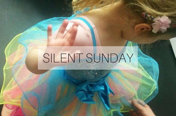 Silent Sunday: 20 December 2015