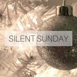 Silent Sunday 151213 Featured