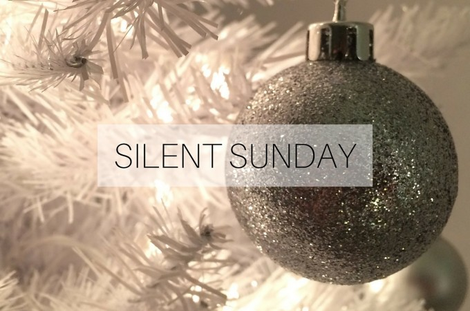 Silent Sunday: 13 December 2015