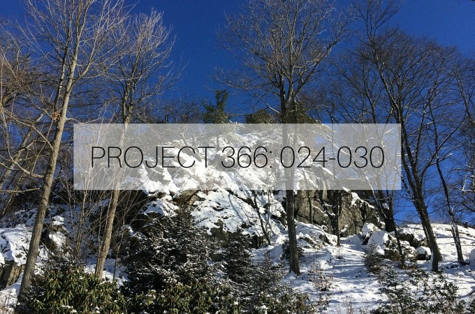 PROJECT 366- 024-030