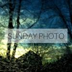 SUNDAY PHOTO 160117 Featured