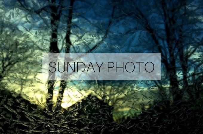 Sunday Photo: 17 January 2016