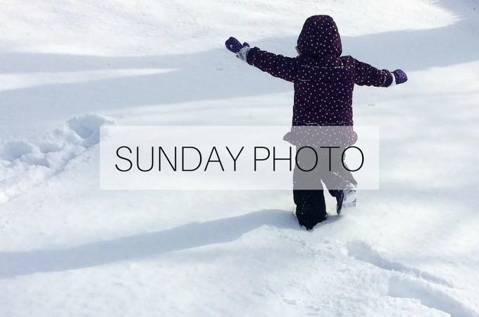 Sunday Photo: 24 January 2016
