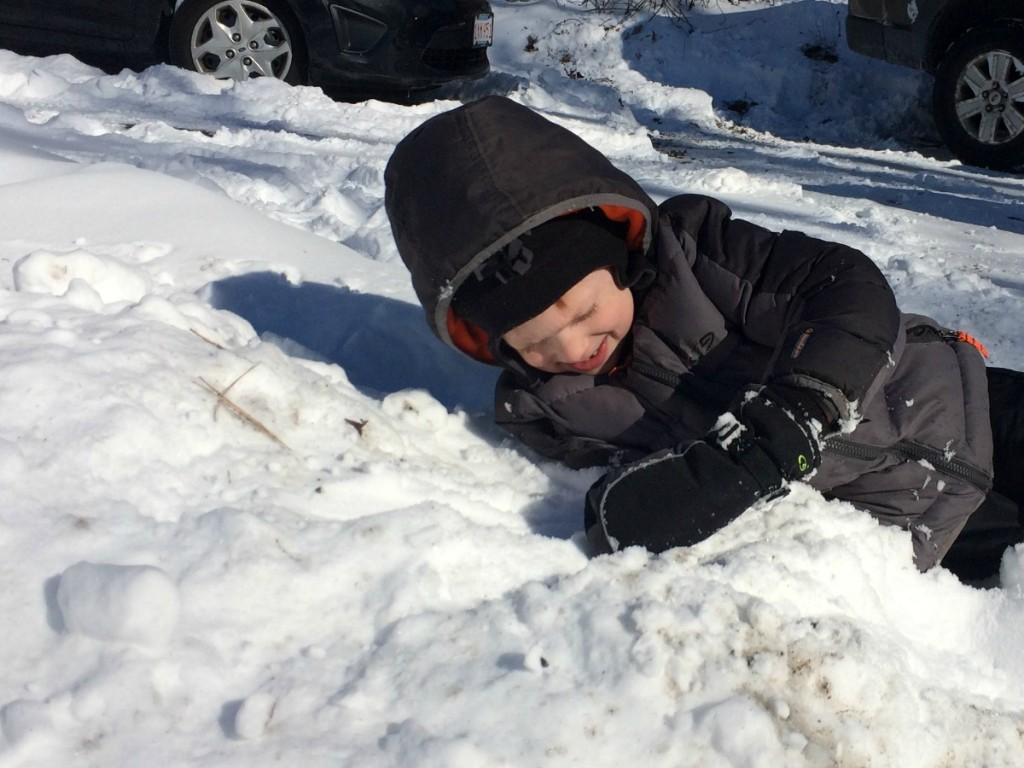 Buried in Snow 1