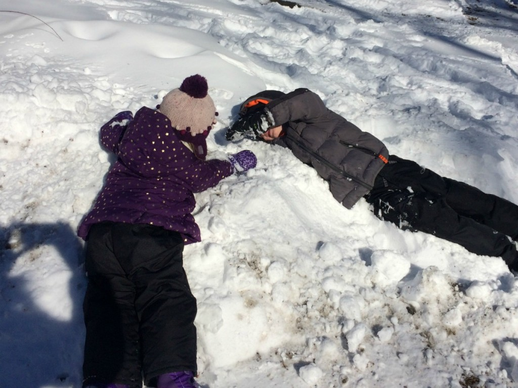 Buried in Snow 2