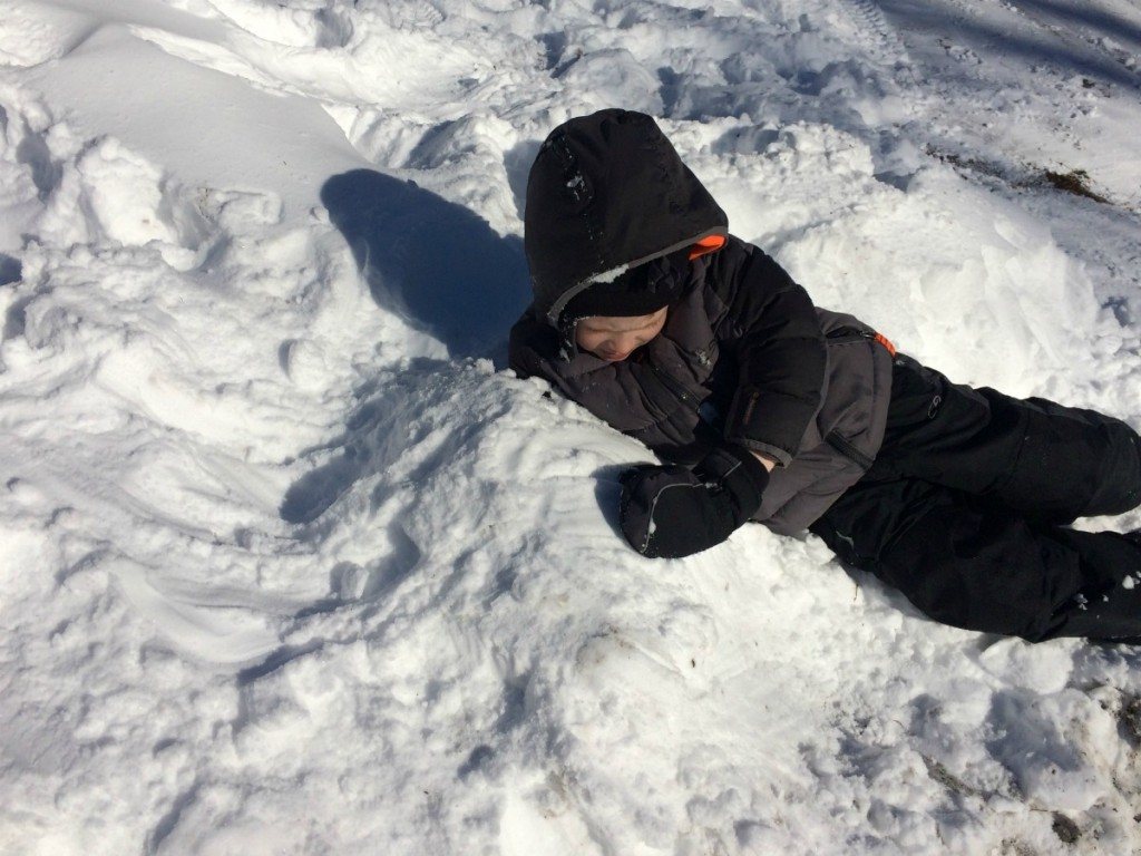 Buried in Snow 5
