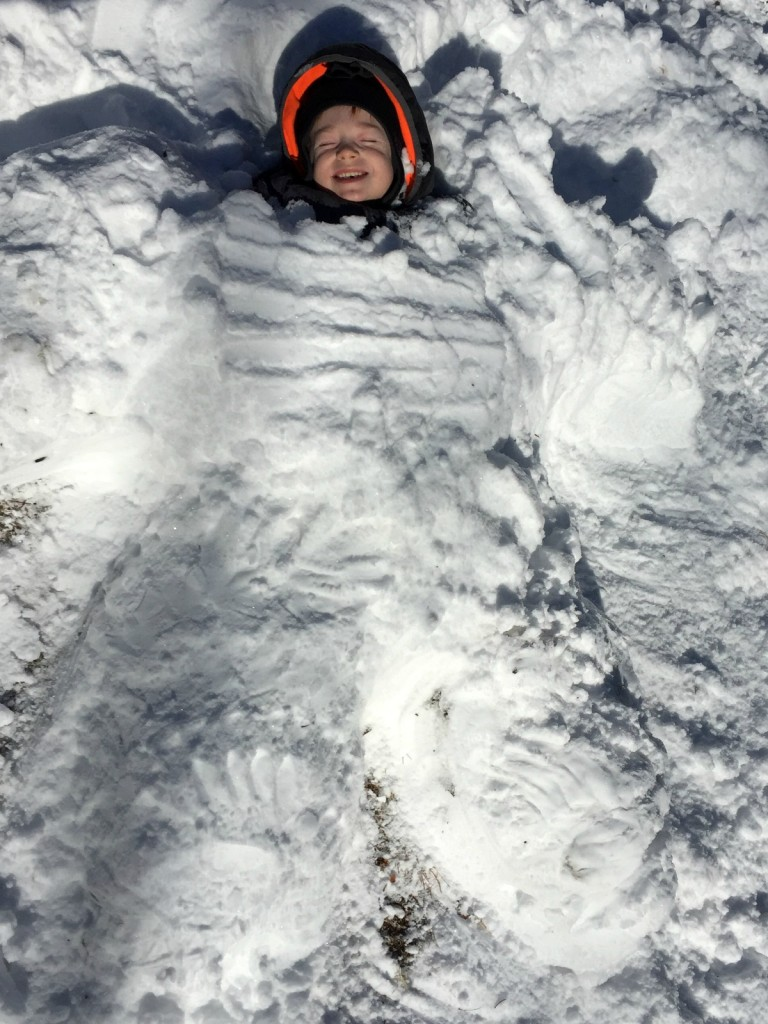 Buried in Snow 7