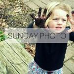 SUNDAY PHOTO 160320 Featured