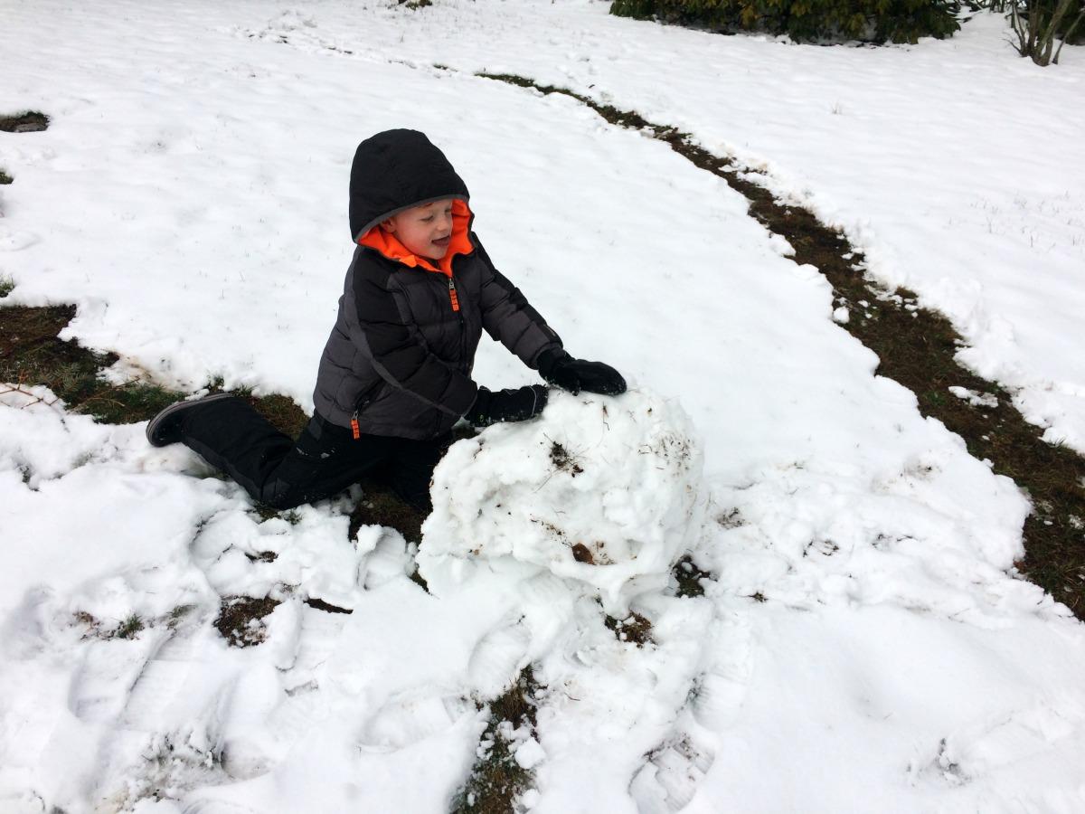 Snow Fort 3