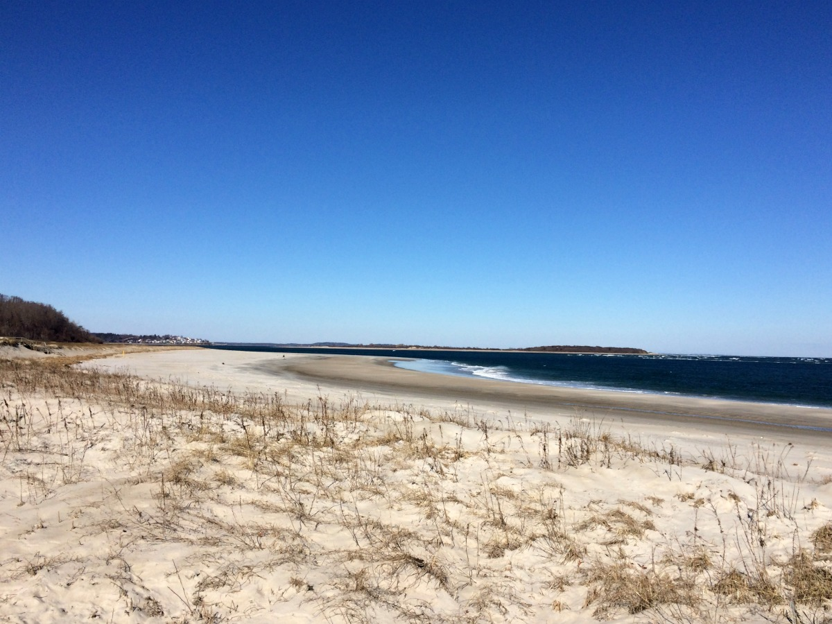 Crane Beach 3