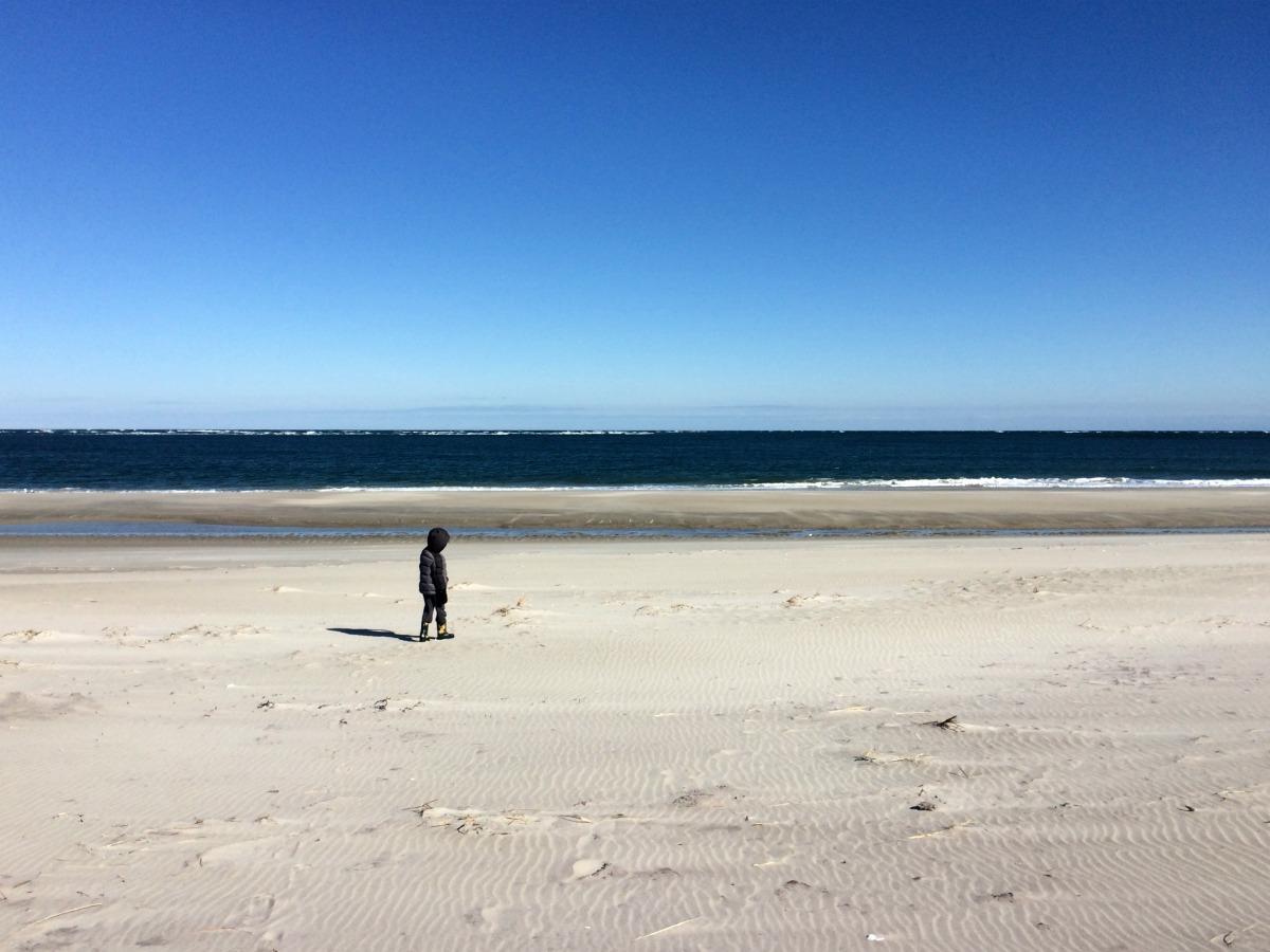Crane Beach 5