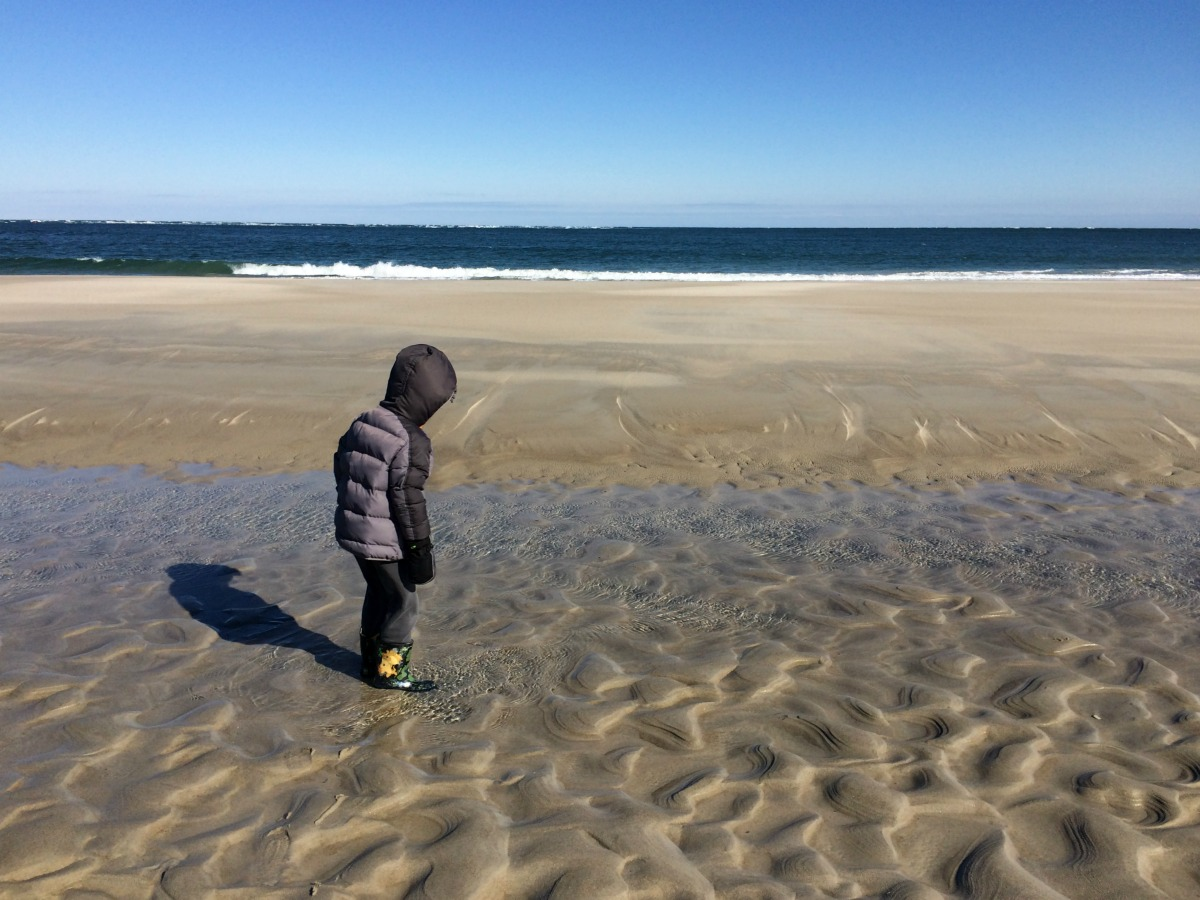 Crane Beach 7