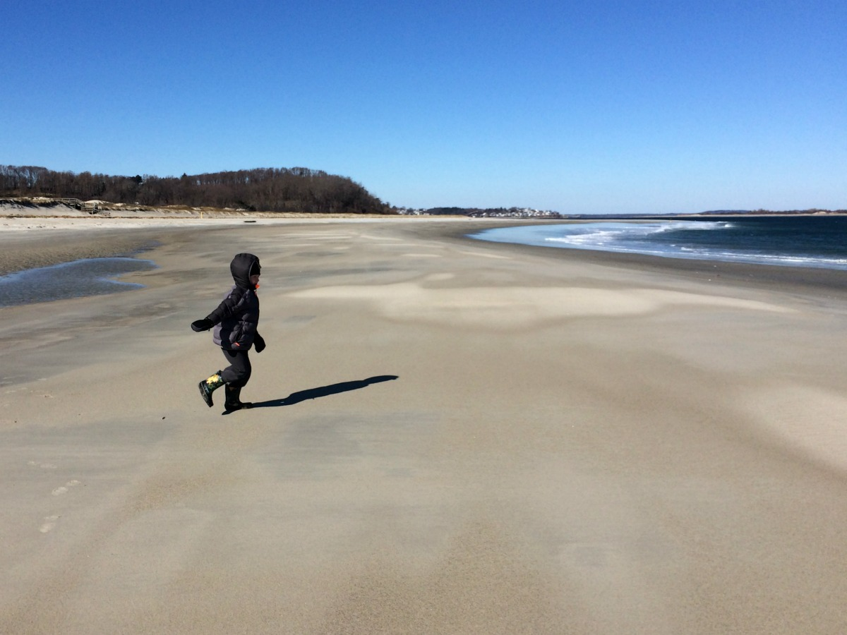 Crane Beach 8
