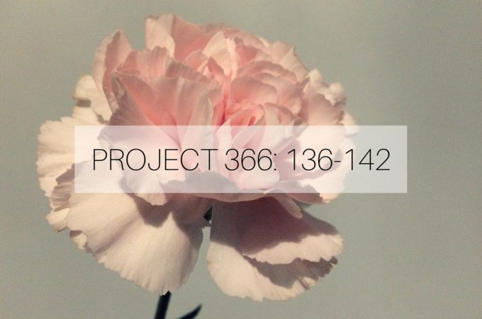 PROJECT 366_ 136-142