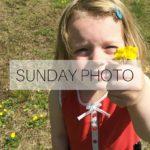 SUNDAY PHOTO 160515 Featured