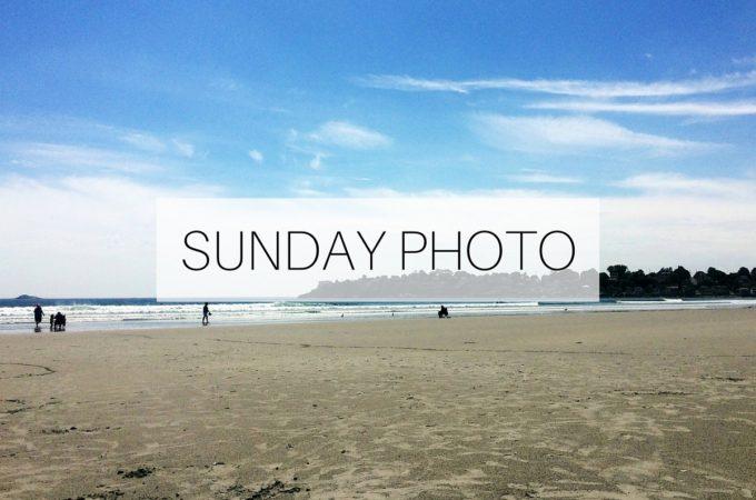 SUNDAY PHOTO 160626 Featured