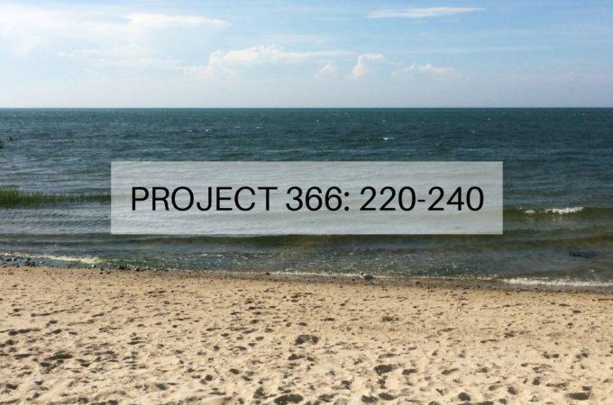 Project 366: Week 32-34: 220-240