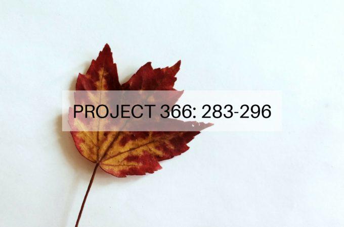 Project 366: Week 41-42: 283-296